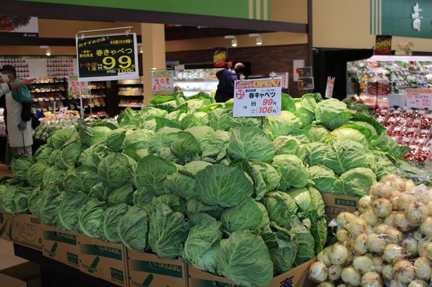 地元の畑で採れた新鮮な野菜