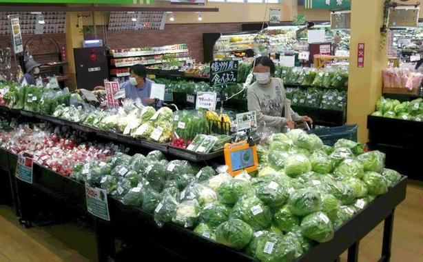 新鮮野菜が畑から売場へ直行!!