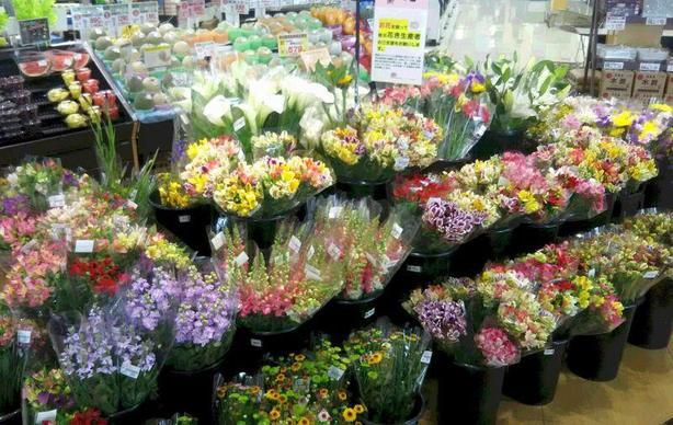 季節のお花はもちろん、ドライフラワーも充実